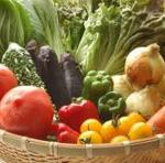 取れたて有機野菜は野菜本来の味
